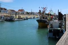 Boyardvile - Kanal