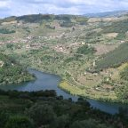 [2019-05-18] Von Tabuaço nach Oliveira do Douro (Cinfães)
