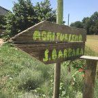 [2019-06-23] Pausentag in San Miniato